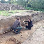 Descubrimientos 2014 Fortaleza Vikinga
