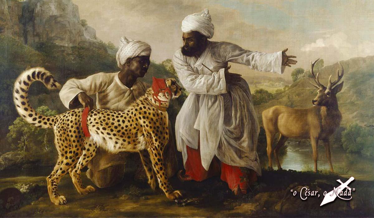 La historia de la caza con guepardos