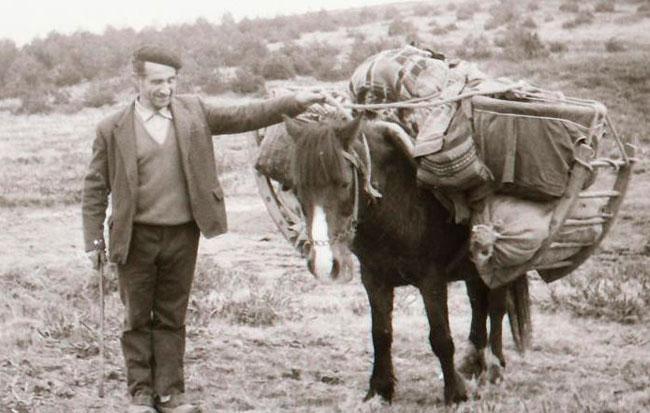 razas malditas de España Vaqueiros